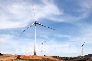 Đầu tư hơn 5.200 tỷ đồng phát triển điện gió