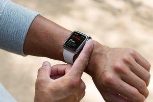 Apple Watch Series 5 có tính năng điện tâm đồ sẽ tung rộng rãi ra thị trường
