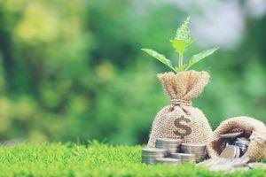 Khối ngoại gom mạnh bluechip, mua ròng hơn 170 tỷ đồng trong phiên 19/2