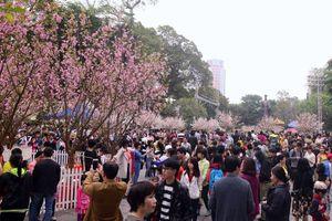Sẽ tổ chức Hội nghị hợp tác du lịch Hà Nội - Nhật Bản