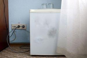 Tình cờ phát hiện thi thể người phụ nữ mất tích suốt 18 năm trong tủ đông