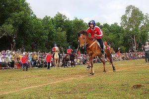 Xin ý kiến Thành ủy Đà Nẵng về dự án trường đua ngựa