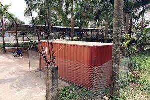 Bao giờ bán đấu giá cây sưa 'trăm tỷ' ở Hà Nội?