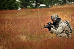 Quân đội Mỹ tuyên chiến với... 'cỏ Nga'!