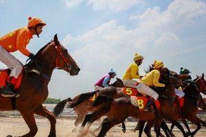 Số phận trường đua ngựa 200 triệu đô ở TP Đà Nẵng sẽ ra sao?