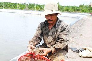 3 khó khăn chính kiềm hãm ngành thủy sản