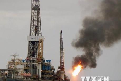 Giá dầu châu Á ngày 20/2 đi xuống