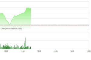 Chứng khoán sáng 20/2: VHM vẫn mạnh, VN-Index vượt 970