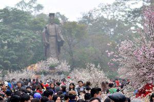 Trưng bày trên 20.000 cành và 100 cây anh đào bên Hồ Hoàn Kiếm