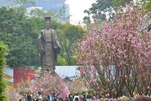 Trưng bày 100 cây và 20.000 cành hoa anh đào tại Lễ hội hoa anh đào Nhật Bản - Hà Nội 2019