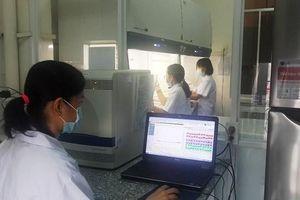 Xét nghiệm miễn phí Dịch tả lợn châu Phi tại 8 phòng thí nghiệm