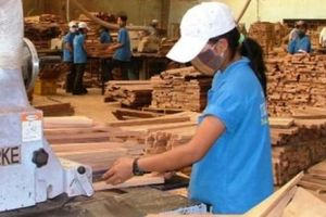 Ngành chế biến gỗ đang 'hút' doanh nghiệp FDI