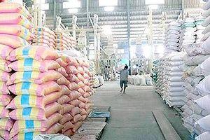 Đã có kế hoạch mua lương thực dự trữ quốc gia năm 2019