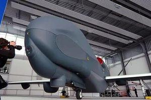 NATO, Canada đấu thầu mua nguyên mẫu máy bay không người lái của Đức