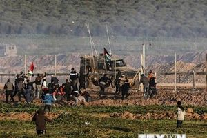 Liên hợp quốc: Nguy cơ chiến tranh giữa Israel-Palestine đang lớn dần