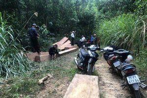 Phát hiện bãi tập kết gỗ lậu tại huyện M'Đrắk