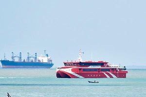 Tàu Côn Đảo Express 36 gặp sự cố, gần 400 khách hủy hành trình