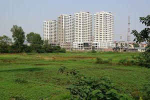 Hà Nội thông qua kế hoạch sử dụng đất cấp huyện năm 2019