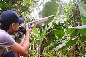 Bật điện thoại giả tiếng gà rừng gáy, thợ săn bị bắn nhầm tử vong