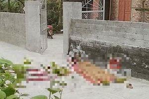 Hải Phòng: Cãi nhau trong cuộc nhậu, người đàn ông trụ cột của gia đình bị đâm tử vong