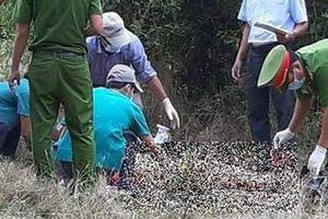 Phát hiện xác phụ nữ chết lõa thể trong rừng ở Ninh Thuận