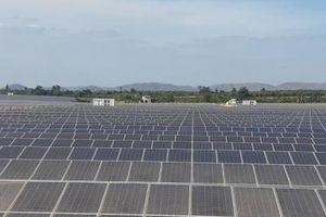 Đắk Lắk hút đầu tư để trở thành trung tâm điện mặt trời