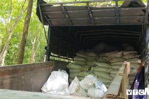 Bắt xe tải đổ trộm khoảng 100 tấn bùn thải trong vườn cao su ở Bình Dương