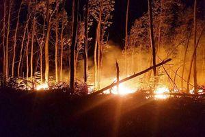 Điều tra nguyên nhân hai vụ cháy liên tiếp tại Thừa Thiên - Huế