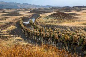 Từ đồng minh đến lính đánh thuê