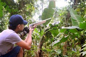 Xử lý thế nào nghi can bắn trúng bạn săn núp bụi cây giả tiếng gà rừng?