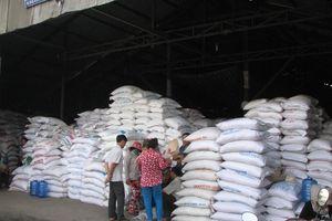 Giá lúa còn ở mức thấp, nông dân không có lãi