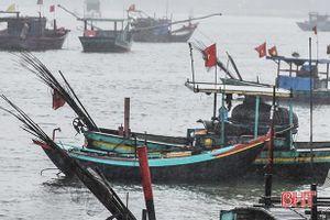 Hai cha con ngư dân bị sóng đánh văng xuống biển mất tích