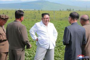 Có một mạng lưới toàn cầu những người ủng hộ 'cuồng nhiệt' Triều Tiên và Chủ tịch Kim Jong-un