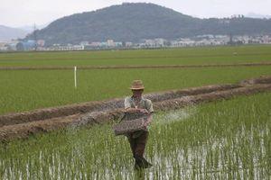 Ông Kim Jong-un quyết 'lột xác' kinh tế Triều Tiên