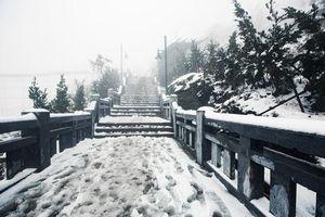 Những hiện tượng thiên nhiên độc đáo trên đỉnh Fansipan