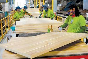 Ngành gỗ 'khát' nhân lực chất lượng cao