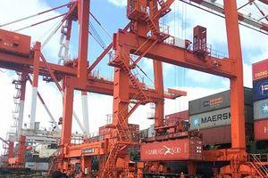 Kiến nghị xử lý nghiêm những sai phạm trong thương vụ bán Cảng Quy Nhơn