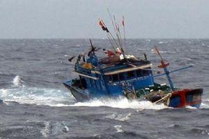 Đắm tàu ở Vân Đồn, ba người một nhà rơi xuống biển