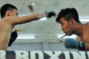 Võ sĩ Trần Văn Thảo: Quyết giành đai vô địch boxing thế giới