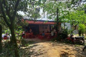 Quảng Nam: Đi lấy mật, một người đàn ông bị ong đốt thiệt mạng