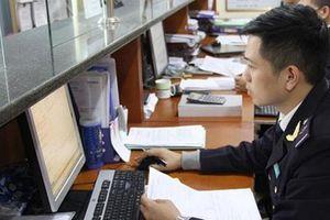 Hải quan Quảng Ninh phấn đấu thu 8.800 tỷ đồng