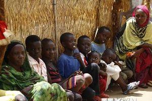 Hơn một nửa số dân Nam Sudan có nguy cơ thiếu lương thực trầm trọng