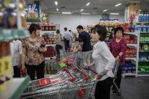 Hợp tác kinh tế Việt Nam và Triều Tiên đã có những bước tiến