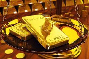 Giá vàng ngày 26/2: Thị trường ổn định ở ngưỡng cao