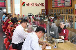 Agribank tiếp tục tái cơ cấu để cổ phần hóa