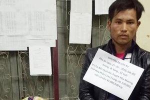 Tiếp tục triệt phá đường dây vận chuyển ma túy lớn từ Lào vào Việt Nam