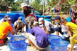 Vĩnh Thuận thúc đẩy kinh tế gắn với xây dựng nông thôn mới