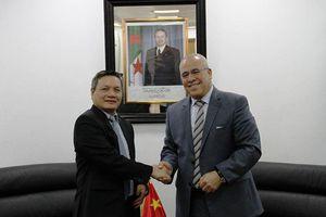 Thúc đẩy hợp tác thương mại - đầu tư giữa Việt Nam và các địa phương của Algeria