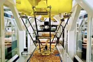 Triển lãm quốc tế về công nghiệp chế biến, đóng gói và bảo quản nông sản thực phẩm