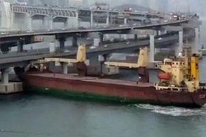 Tàu Nga đâm vào cầu ở Hàn Quốc, thuyền trưởng say xỉn